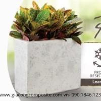 xưởng sản xuất chậu hoa composite tại HCM